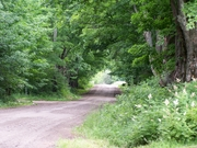 Vermont Country Road