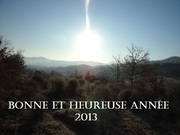 Bonne et heureuse année 2013