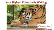 Highest Potential is Waiting AoL Training