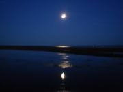 Lune  admirant  son image