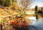 Au bord de l'étang des Chênes -