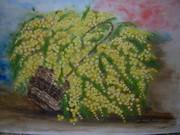 Mimosa d'Annie