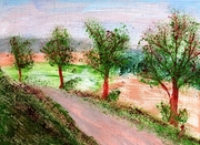 Trees by the roadside