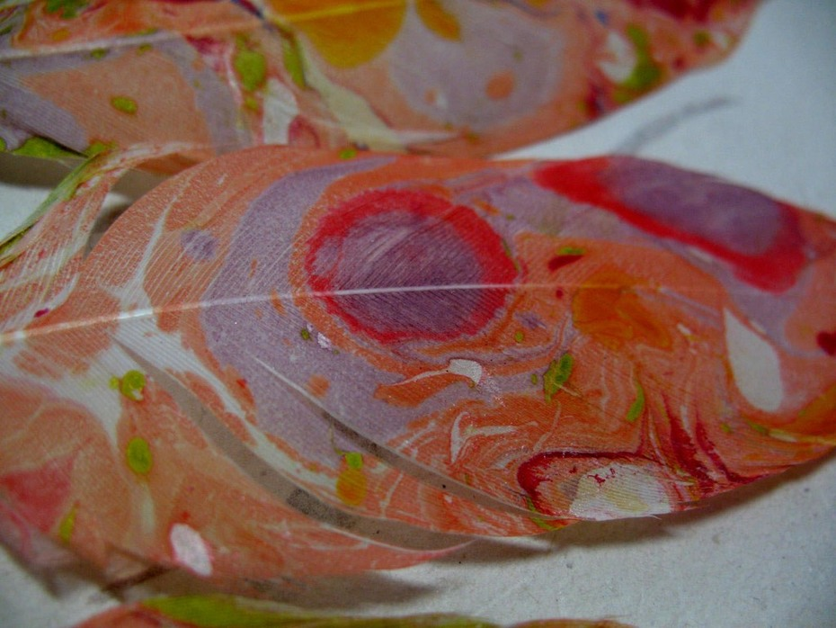 Close up excerpt of a Coral Hand Marbled Feather Set