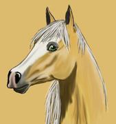 Fin häst!