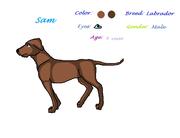 Karaktärer (hundar)