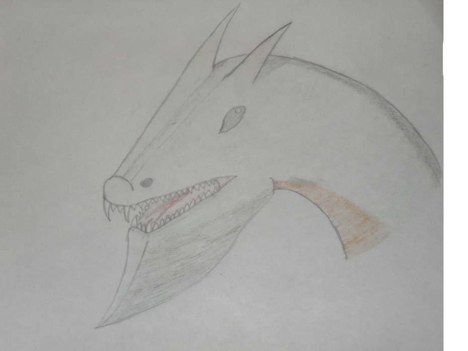 Drake i halvprofil - blyerts, kol och akvarell