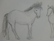 fler hästar