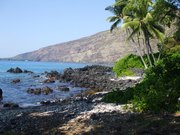Great Kayaking point and snorkeling Kona