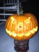 noahs pumpkin