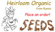 Heirloom Organic seeds!