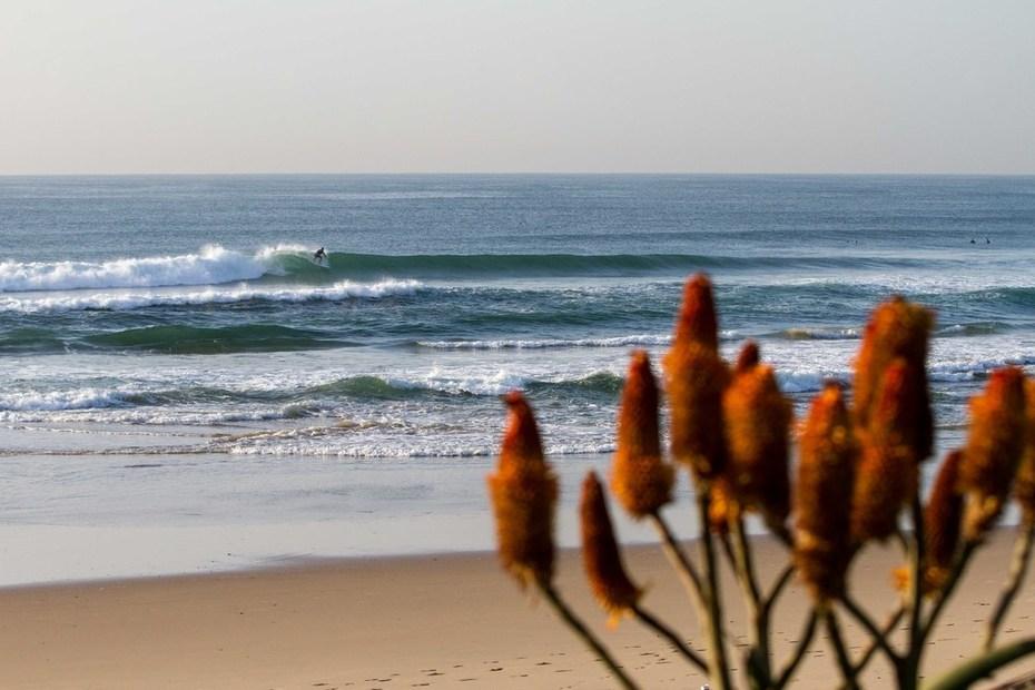 DurbanJune2019-3