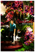 Central Anniversary 2011 preview