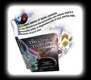 The Cosmic Traveller