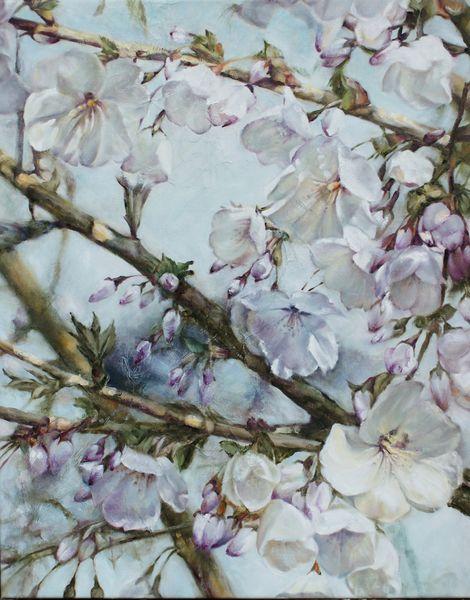 DSC06306 [800x600]