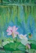 Lotus, u.p 53x37