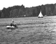 Hund i vattnet