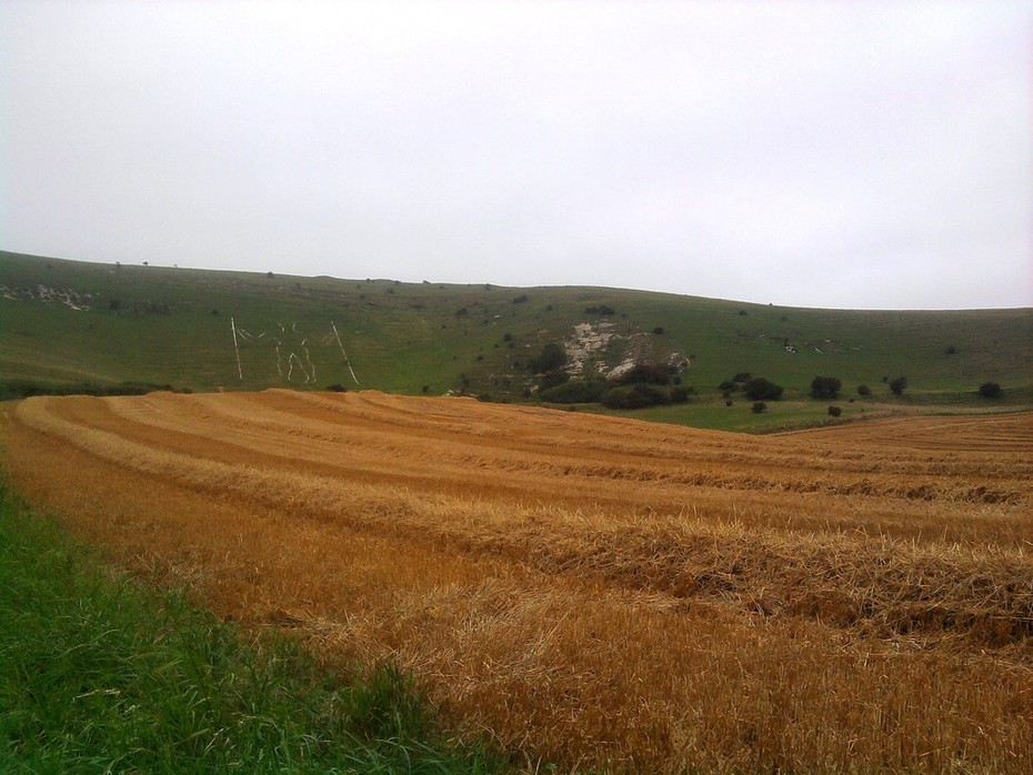 Wilmington Straw Rows with Long Man Photo0232