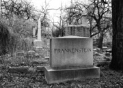 Frankenstein by Angela Geis