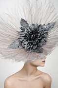 The Couture Collection - by Roger Charles Photography