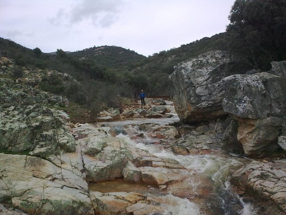 Parque Natural Valle de Alcudia y Sierra Madrona Cereceda