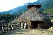 The Tairona Trust, the Kogi of the Andes, and the Destruction of the World