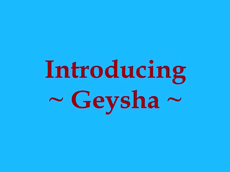 Global_Mission_Geysha_Video