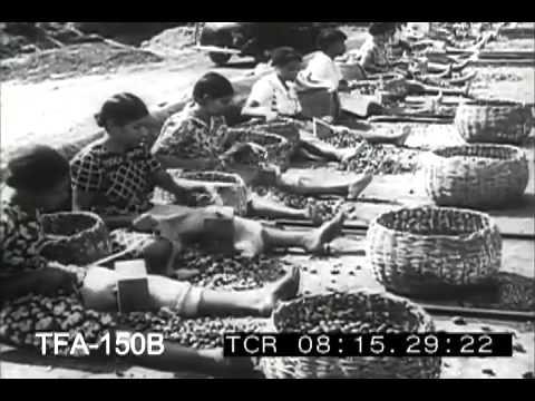 Grenada, West Indies, 1940