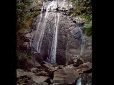 El Yunque-Rio Grande