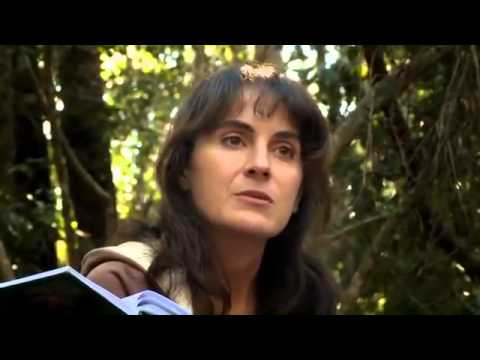HIGHLY RECOMMENDED: * The Animal Communicator * Anna Breytenbach * To Reconnect *