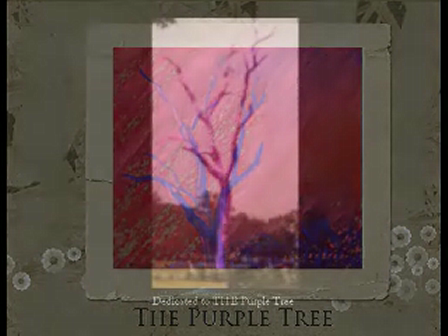 The Purple Tree Series