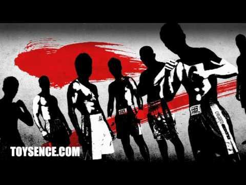 Toysence: Elite boxing Muaythai