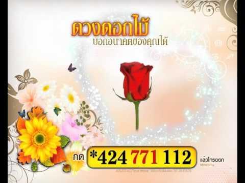 Spot Download ดูดวงดอกไม้