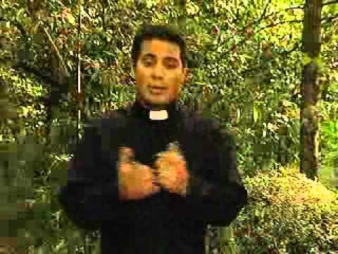 10 de Setembro, dia de São Nicolau de Tolentino