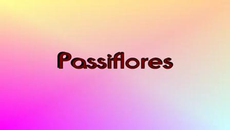 Passiflores