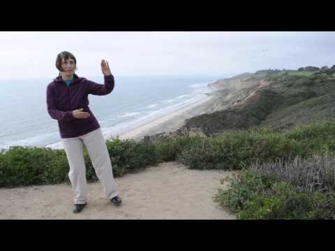 New Creation Tai Chi-Qigong for Gait, Balance and Strength