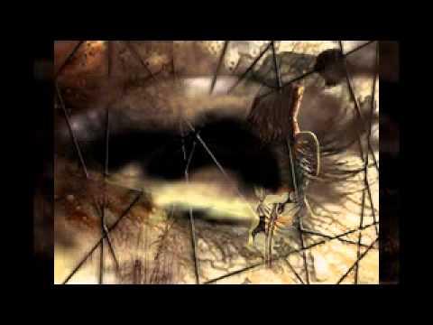 Ce cauţi viaţă - versuri Rodica Cernea