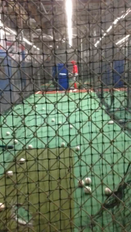 Cage Time