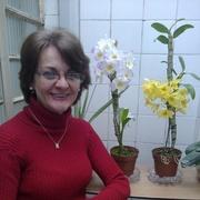 Lucineia Pellegrini