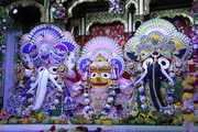 Snana Yatra Festival 2019 at Bhaktivedanta Swami Mission School, Juhu on 17 June 2019