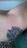 tattoo eiter?