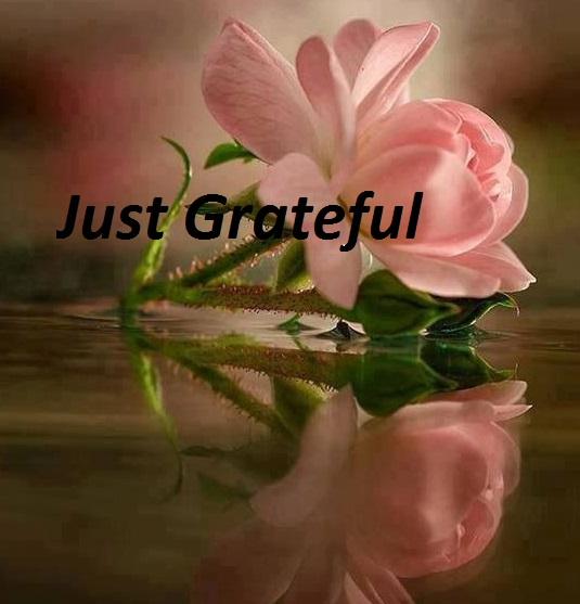JUST GRATEFUL