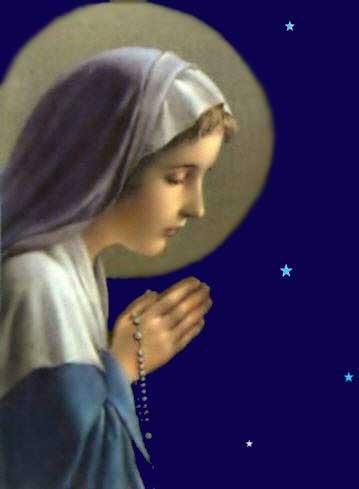Maria Aparecisa Lamosa da Cruz