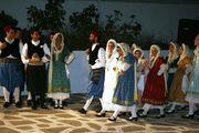 Χορευτική παράσταση / Traditional Dance performance