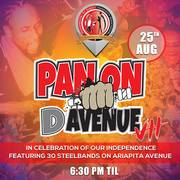 Pan on D Avenue 7