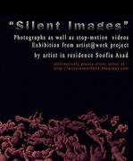 """นิทรรศการ """"จินตภาพที่ไร้ซึ่งซุ่มเสียง"""" (Silent Images)"""