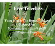 Free Webinar: Feng Shui & The Human-Nature Connection