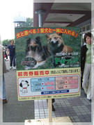 Dog Part in Japan