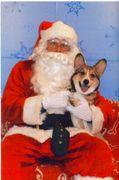 Dash N' Santa