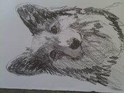 Quick sketch of Quin